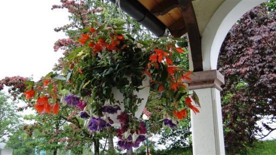 Hotel Annelies: ...die Visitenkarte - der Blumenschmuck....