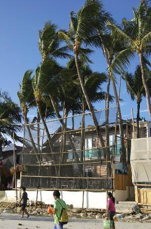 Bluelilly Hotel: real beach front.