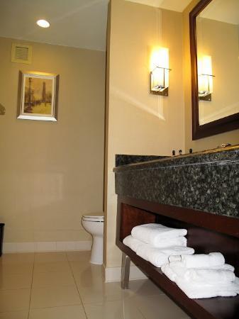 Crystal Gateway Marriott: Badkamer