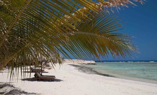 Mangrove Bay : plage