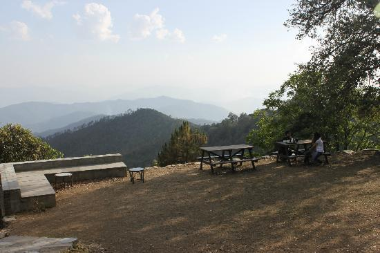 Mary Budden Estate: View from the open playing area
