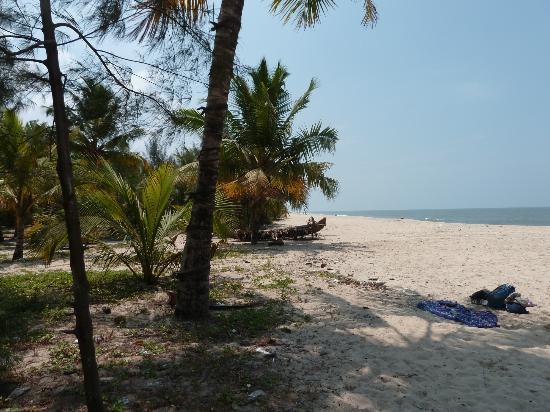 Marari Beach Villas: plage