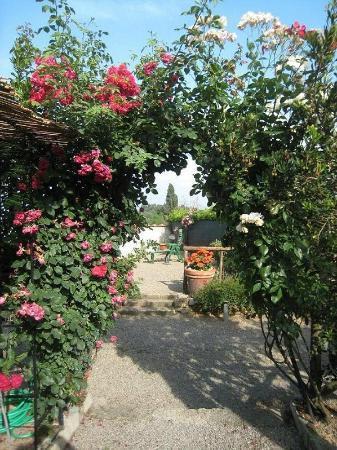 Il Colto: Vue du jardin vers l'entrée