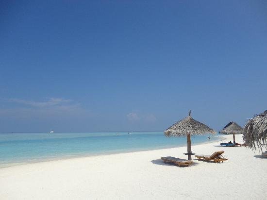 Anantara Dhigu MaldivesResort: spiaggia lato tramonto