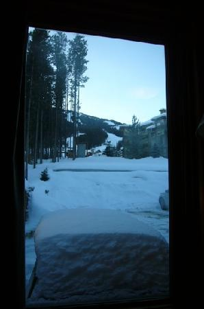 Earl Grey Lodge: view from our room