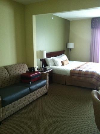Wingate by Wyndham Rock Hill / Charlotte / Metro Area : large rooms