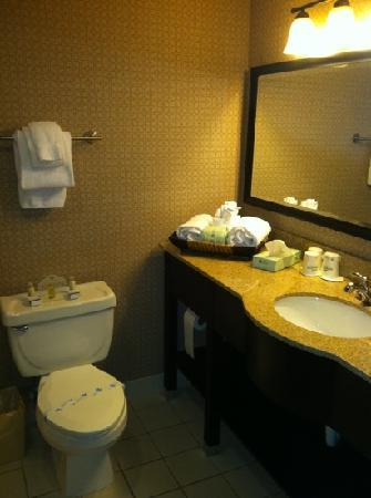 Wingate by Wyndham Rock Hill / Charlotte / Metro Area : clean bathrooms