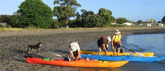 Kaiaua, New Zealand: Launching kayaks on our beach