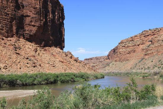 Colorado Riverway Recreation Area: Colorado River beauty