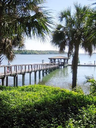 May River Excursions: Palmetto Bluffs