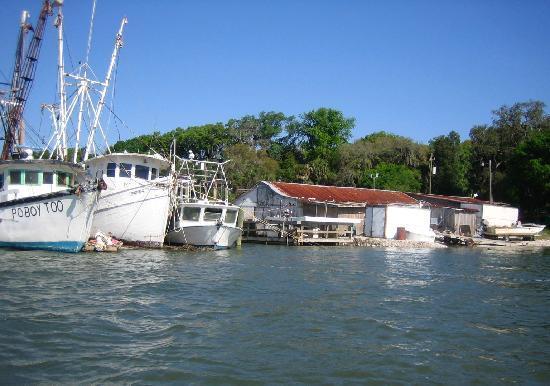 May River Excursions: Shrimp Boats