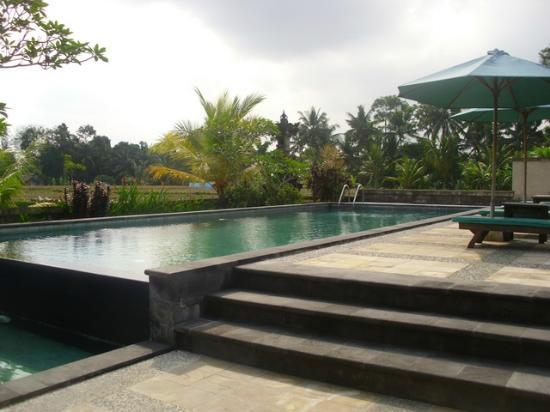 Nyoman Karsa Bungalows: nice pool