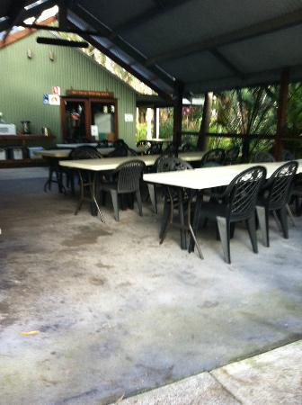 The Oasis at One Mile Beach: Outdoor Area