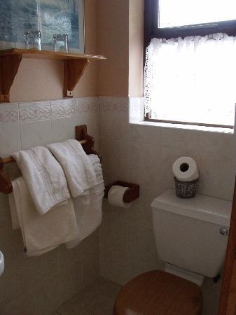 都鐸小屋B&B旅館照片