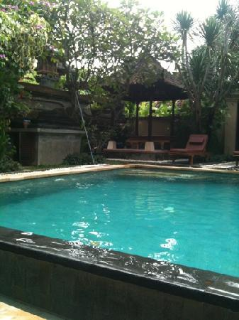 Surya Mas Villa: Poolside