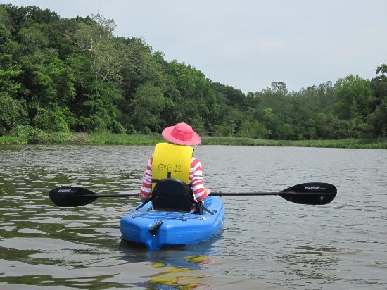 The Kitty Knight House: Free kayaks to explore the Sassafras river - eagles nesting nearby