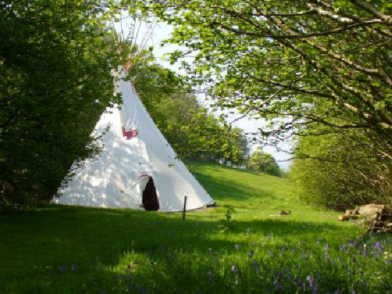 Mid Wales Tipis: The secluded tipi field
