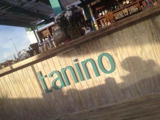 Tanino Restaurante Bar: the bar