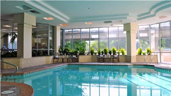 Embassy Suites by Hilton Walnut Creek : Our Indoor Pool