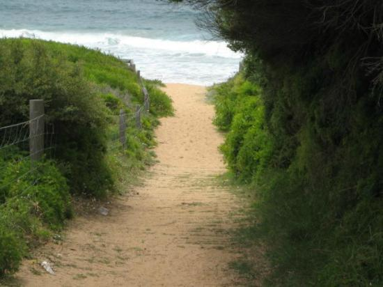 Palm Beach: Great walkway to the beach