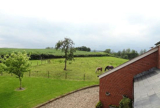 Mill Farm: View from our room