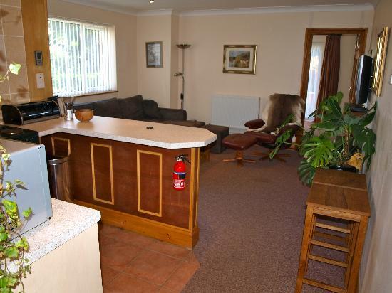Coed y Bryn Bed and Breakfast : Studio Lounge