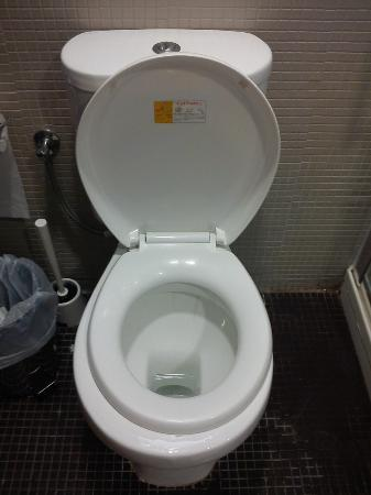 Hotel Anavadia: Amusingly fitted toilet seat