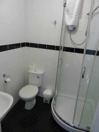 Barrington Lodge: Shower & Toilet