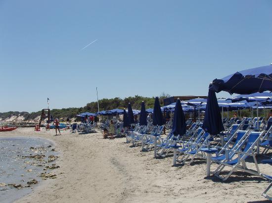 Bravo Daniela : spiaggia riservata hotel