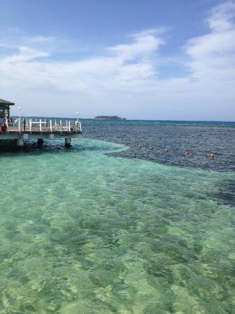 Decameron Los Delfines: Esta es la vista del comedor