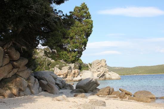 Residence Ribellinu: Strand vlakbij het residence