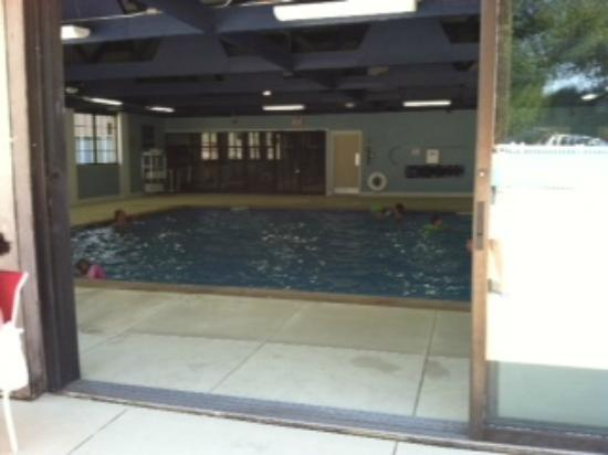 Four Points by Sheraton Kalamazoo: You can sunbathe while the kids swim!