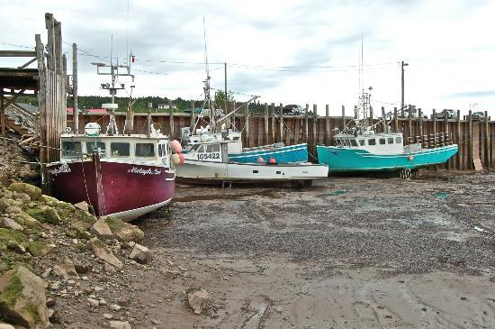 Tides Restaurant: Low Tide in Alma Harbor