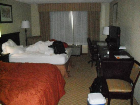 Country Inn & Suites By Carlson, Savannah Midtown: Our room