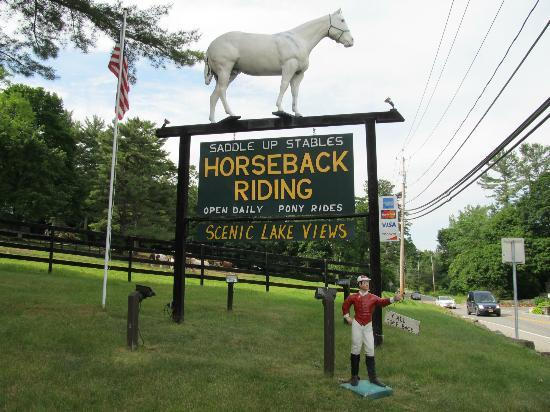 The sign in front of Saddle Up Stables is such an eye catcher especially with the horse on top
