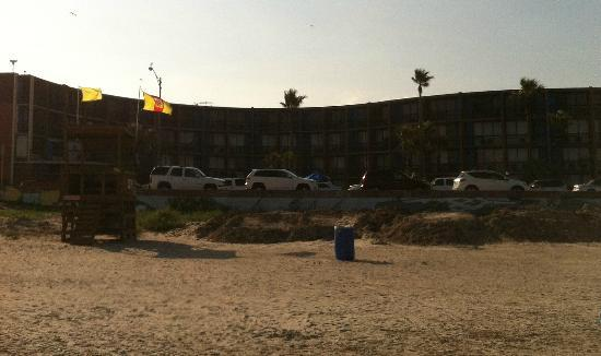 Commodore on the Beach: View of motel from the beach
