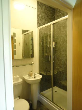 Llety Cynin: Bathroom