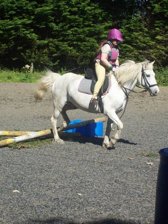 Bantry Pony Trekking - Private Rides: Cerys over the jumps with Star