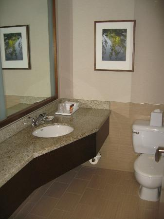 Sheraton Vancouver Airport Hotel: Bathroom