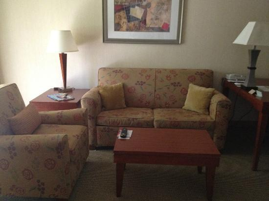 DoubleTree Suites by Hilton Indianapolis-Carmel: living room area