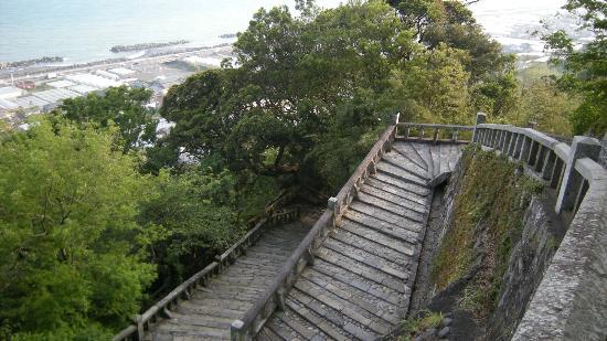 Nihondaira Ropeway: 1000 steps-not as hard as it looks...