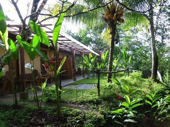 Hotel Paraiso Carlisa: mi bungalow en medio de la selva