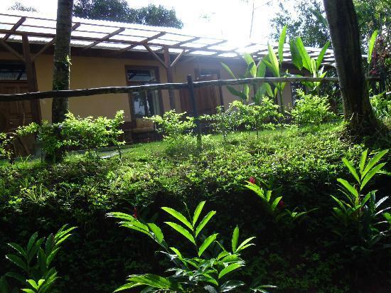 Hotel Paraiso Carlisa: vista desde la habitacion