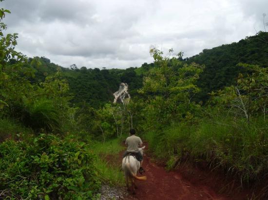 Hotel Paraiso Carlisa: paseo a caballo hasta la catarata