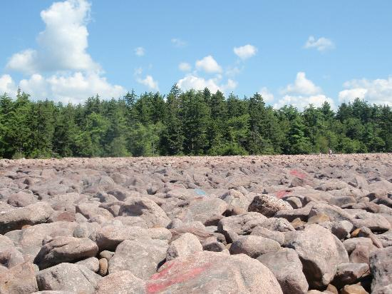 Pocono Mountains Region, Pensilvanya: Boulder Field