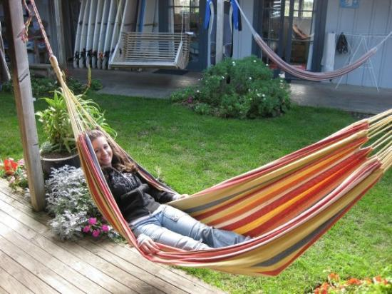 Raglan Backpackers and Waterfront Lodge: Hammock!