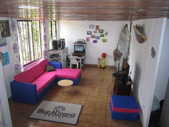 Blue Almond Hostel: Common Areas