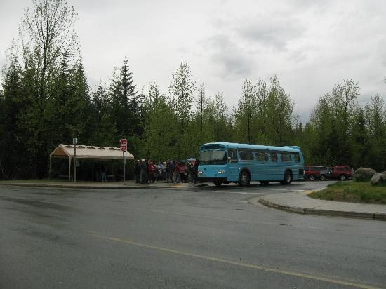 The Glacier Express Blue Bus over a mile closer to the Glacier than city bus