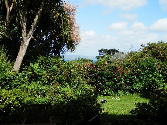 Panorama Guest House: garden