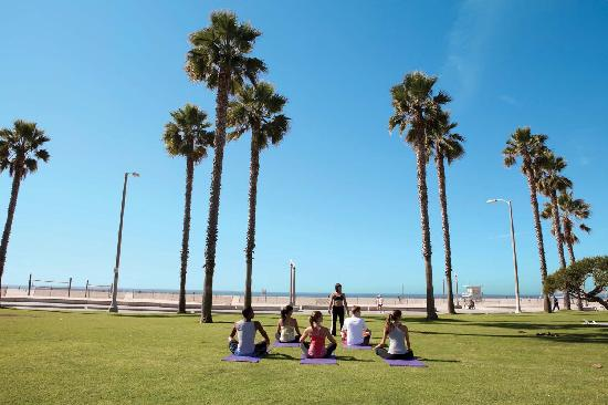Yoga on the lawn in Santa Monica, California - Photo by Kristen Beinke